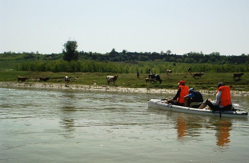 kayaking for couples on neajlov
